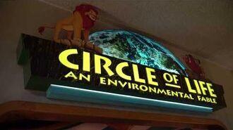 4K Circle of Life An Environmental Fable at Epcot