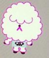 Poodle Kid