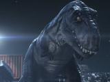 Pak Rex