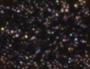 Thumbnail for version as of 22:33, September 1, 2012