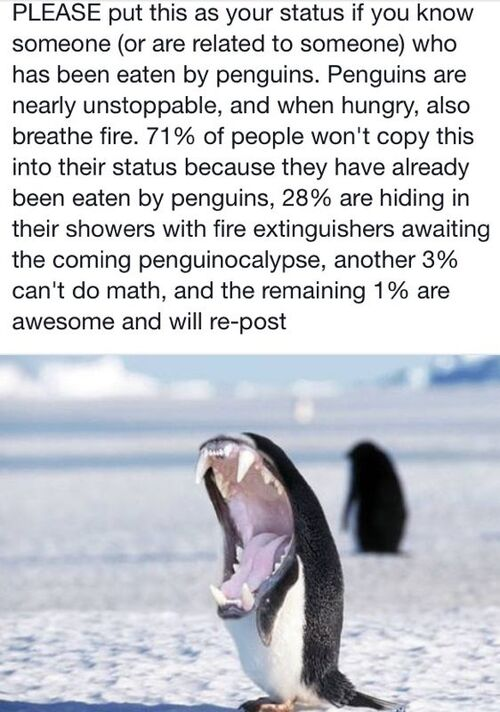 Killer penguins