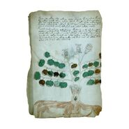 Página del Manuscrito Voynich02