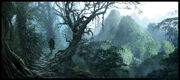 Jungle por Raphael Lacoste