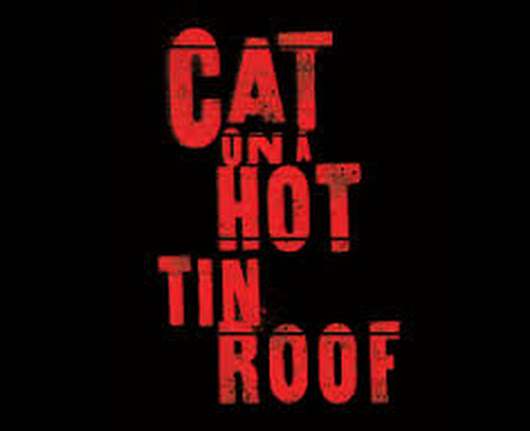 ESC Founder Darryl Maximilian Robinson Directed and Played Big Daddy in The 1999 Excaliber Shakespeare Company of Chicago production of Cat On A Hot Tin Roof