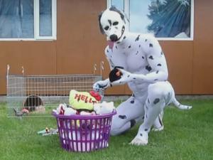 DalmatianMan