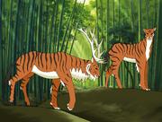 Tiger elk
