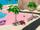Pink-Sand Beach