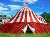 Tyrone's Terrific Traveling Circus