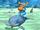 Dolphin Racer Tyrone