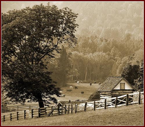 File:Ash Lawn - Highland (Sepia).jpg