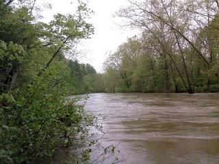 File:Cowpasture River scene.jpg