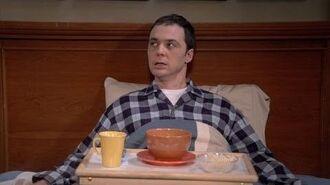 The Big Bang Theory - Little Ray Of Sheldon