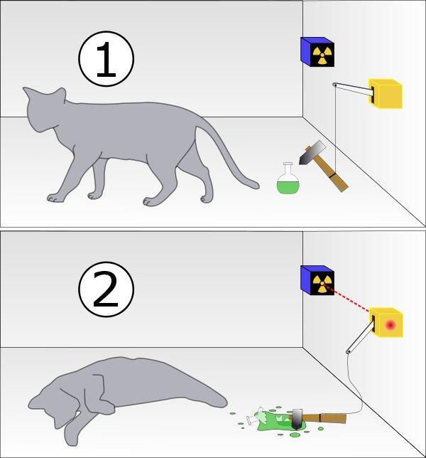 Resultado de imagen de Segunda versión del gato de Schrödinger