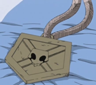File:Substitute Shinigami Badge.png