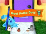 Meet Polka Dots!