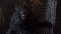 Hunter Sands as Werewolf