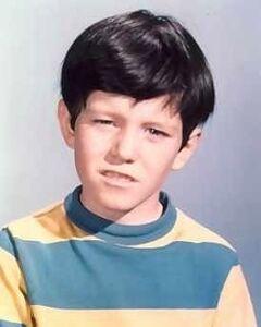 Bobby-Brady-the-brady-bunch-5795637-250-312