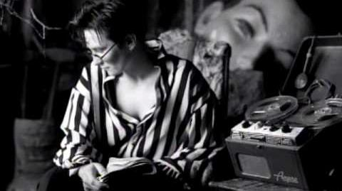 K.d. lang - Constant Craving (Video)