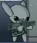 Rifle Swat