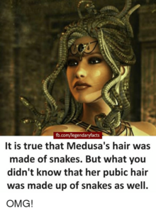 Fb-com-legendaryfacts-it-is-true-that-medusas-hair-was-made-of-23474658