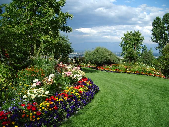 The Garden of Bacchus | Camp Jupiter Roleplay Wiki | FANDOM powered ...