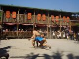 Gladiator Fighting