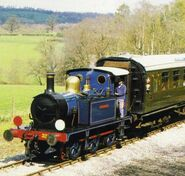No. 323 Bluebell