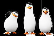 PENGUINS-OF-MADAGASCAR private-kowalski-rico