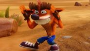 Fake Crash (a.k.a. Trash Bandicoot)