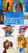 Owls (Storks).