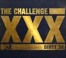 XXX: Dirty 30