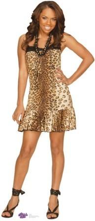 Aqua-the-cheetah-girls-16186316-193-449