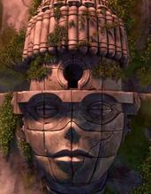 Elder head