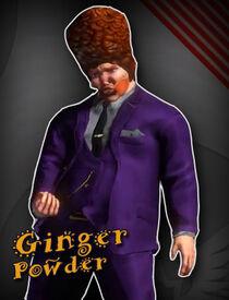 Ginger Powder v3