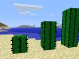 Nova's Cactus Defenses