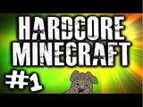 Hardcore Minecraft