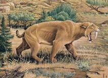 Smilodon images
