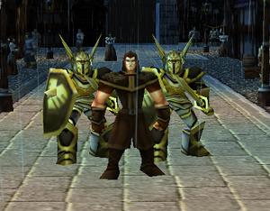 Black Hawk Guards