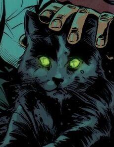 Darklingcat1