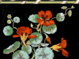 Nasturtium 8 in Frieze Tiles - Mintons China Works