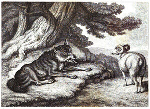 6. The Sheep and the Hunted wolf