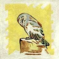 Owl 2 Dunsmore Tiles Polly Brace c1930 Minton Blank