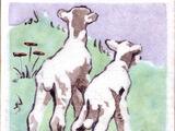 Animals - Dunsmore Tiles