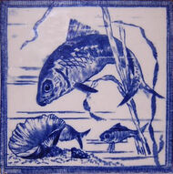 Fish & shell
