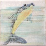 Fish 10a