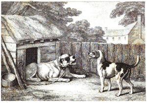 5. The Mastiff and the Hound