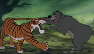 Baloo the bear is still grabing hold of shere khan the tigers tail
