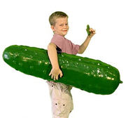 012611pickle