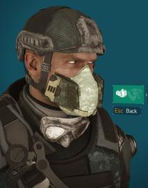 PM mask