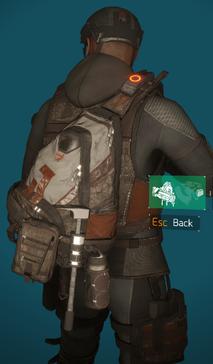 PM2 bag